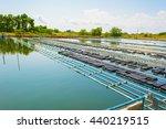 image of a floating basket for... | Shutterstock . vector #440219515