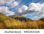scottish highlands in beautiful ...   Shutterstock . vector #440243164