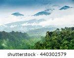rainforest   background mt....   Shutterstock . vector #440302579