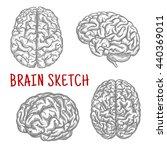 brain sketch symbols with... | Shutterstock .eps vector #440369011