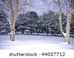 early morning snow fall | Shutterstock . vector #44037712