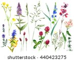 hand drawn watercolor set with... | Shutterstock . vector #440423275