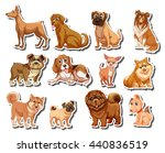 stickers of different kind of... | Shutterstock .eps vector #440836519