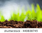 new life. young sprout in... | Shutterstock . vector #440838745