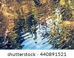 Rippled Water Surface With...