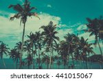 Palm Trees On A Hill At...