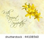 sympathy card featuring pretty...   Shutterstock . vector #44108560