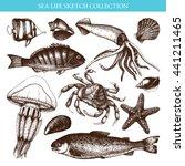 vector sea life illustration...   Shutterstock .eps vector #441211465