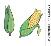 vector two corn. corn on the... | Shutterstock .eps vector #441226621