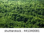 trees top view  forest... | Shutterstock . vector #441340081