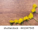 Yellow Dandelions Lying On The...
