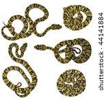 speckled forest pitviper ... | Shutterstock . vector #44141884