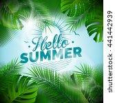hello summer typographic...   Shutterstock . vector #441442939