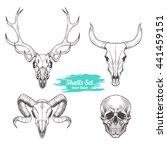 Set Of Skulls. Vector...