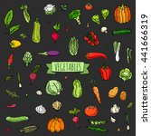 hand drawn doodle vegetables... | Shutterstock .eps vector #441666319