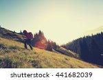 young woman backpacker hiking... | Shutterstock . vector #441682039