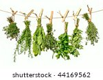 Fresh Herbs Hanging On A Line...