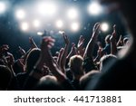 people enjoying good party... | Shutterstock . vector #441713881