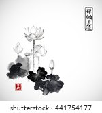 lotus flowers hand drawn with... | Shutterstock .eps vector #441754177