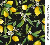 seamless floral pattern. lemon... | Shutterstock .eps vector #441847927