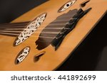 oud or lute.1 | Shutterstock . vector #441892699