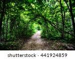 limehouse bruce trail halton... | Shutterstock . vector #441924859