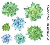 watercolor succulents set  ... | Shutterstock . vector #442000999