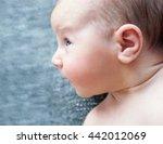 newborn baby  | Shutterstock . vector #442012069