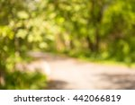 abstract blur city park with... | Shutterstock . vector #442066819