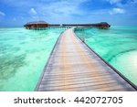 beach with water bungalows at... | Shutterstock . vector #442072705
