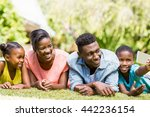 happy family taking a photo at...   Shutterstock . vector #442236154