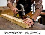 tools and equipment used for... | Shutterstock . vector #442239937