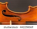 violin macro with black... | Shutterstock . vector #442258369