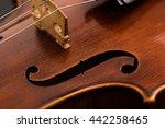 violin macro with black... | Shutterstock . vector #442258465
