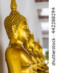 the statues of buddha in wat... | Shutterstock . vector #442288294