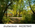nature  | Shutterstock . vector #442307845