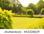 blurry park background | Shutterstock . vector #442328029