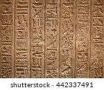 egyptian hieroglyphs on the wall | Shutterstock . vector #442337491