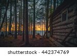 Old Fishing Hut In The Woods O...