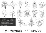 leaves and grass vector. easy...