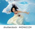 woman presenting underwater... | Shutterstock . vector #442461124