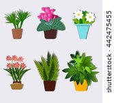 house plants and flowers in... | Shutterstock .eps vector #442475455
