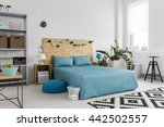 spacious bedroom with large bed ... | Shutterstock . vector #442502557
