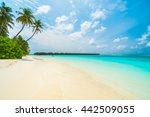 beautiful tropical maldives... | Shutterstock . vector #442509055