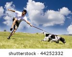Stock photo man playing with his dog on sunny summer day 44252332