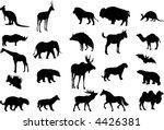 animals  vector  | Shutterstock .eps vector #4426381