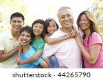 portrait of extended family...   Shutterstock . vector #44265790