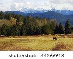 this rural scene taken from... | Shutterstock . vector #44266918