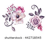 Watercolor Illustration  Pink...