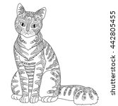 high detail patterned cat in... | Shutterstock .eps vector #442805455
